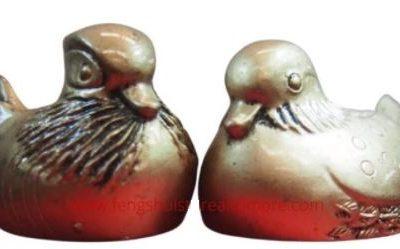 Man ducks QLD bronze